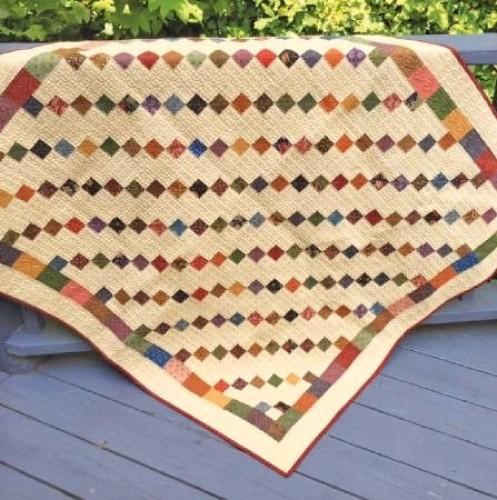 Eleanor Burns Cut Loose Press Simplicity Quilt Pattern