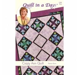 Crazy Ann Quilt: Eleanor Burns Signature Pattern