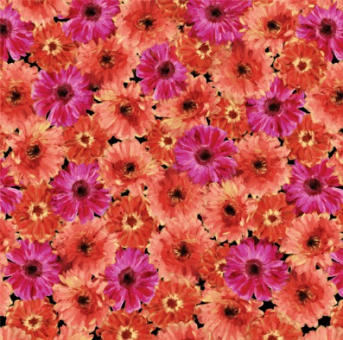 KANVAS STUDIO - Blooming Beauty - Floral Splendor - Coral Pink