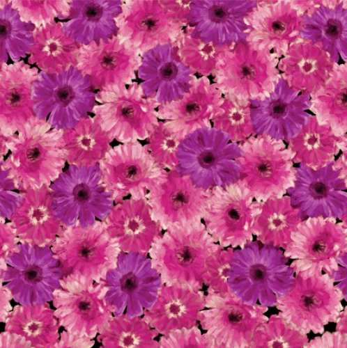 KANVAS STUDIO - Blooming Beauty - Floral Splendor - Violet