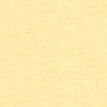 BENARTEX - Cotton Shot - Butter
