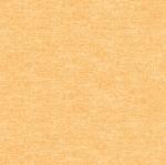 BENARTEX - Nightingale - Cotton Shot - Orange