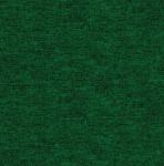 BENARTEX - Cotton Shot - Ivy