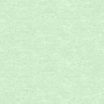BENARTEX - Cotton Shot - Mint