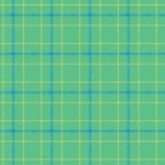 CONTEMPO - Warp and Weft II - Double Plaid - Mint