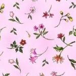 PAINTBRUSH STUDIO - Fantasia - Pink Tossed Flowers - SL4098-