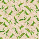 PAINTBRUSH STUDIO - Frolicking Fields - Praying Mantis - Cream