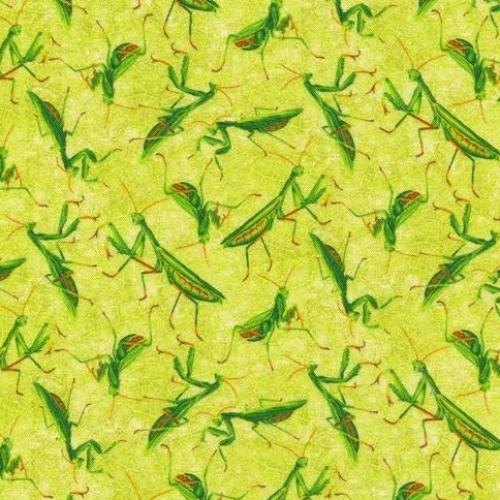 PAINTBRUSH STUDIO - Frolicking Fields - Praying Mantis - Green