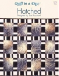 Hatched: Eleanor Burns Signature Pattern