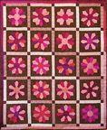 Clearance - Classic Quilts - Petals N Pink