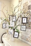 Typeset Ornaments - Crabapple Hill Studio