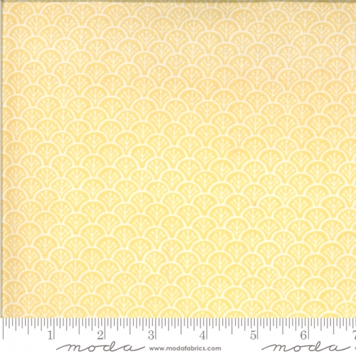 MODA FABRICS - Chantilly - Scallops Sunshine - #2386-
