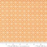 Skinny - SK4752- 2/3 yds - ODA FABRICS - Pumpkins Blossoms by Fig Tree And Co - Florence - Pumpkin