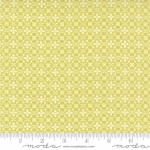 MODA FABRICS - Pumpkins Blossoms by Fig Tree And Co - Florence - Sprout