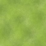 BENARTEX - SHADOW BLUSH - GRASS GREEN