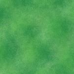 BENARTEX - SHADOW BLUSH - KELLY GREEN