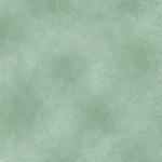 BENARTEX - SHADOW BLUSH - SEA MIST