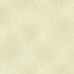 BENARTEX - SHADOW BLUSH - BABY GREEN