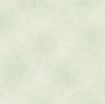 BENARTEX - SHADOW BLUSH - MINTY
