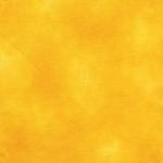 BENARTEX - SHADOW BLUSH - SAFFRON