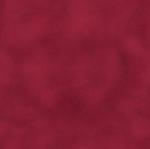 BENARTEX - SHADOW BLUSH - RUBY