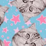 CAMELOT FABRICS - Cat Rules - Superstars - Blue