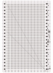 Creative Grids Stripology Ruler  CGRGE1 - includes Zippy Strippy Play Quilt Pattern