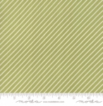 MODA FABRICS - Early Bird Stripe - Green