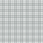 BENARTEX - Home Grown - Gray Plaid - #1789-