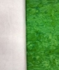 Quilt in a Days Le Moyne Star Kit - Short Table Runner - Green