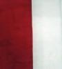 Quilt in a Days Le Moyne Star Kit - Short Table Runner - Red
