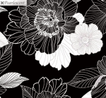 KANVAS STUDIO - Midnight Pearl - Midnight Blooms - Black - Pearlized