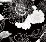 KANVAS STUDIO - Midnight Pearl - Midnight Blooms - Black - Pearlized