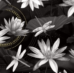 BENARTEX - Dragonfly Dance - Waterlily Pool Black/Gray