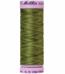 Silk-finish 50wt Variegated Cotton Thread 109yd/100m Ferns