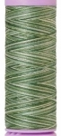 Silk-finish 50wt Variegated Cotton Thread 109yd/100m Spruce Pines