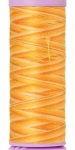 Silk-finish 50wt Variegated Cotton Thread 109yd/100m Horizon