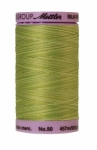 Silk-finish 50wt Variegated Cotton Thread 500yd/457m Little Sprouts