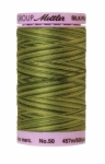 Silk-finish 50wt Variegated Cotton Thread 500yd/457m Ferns