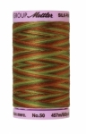 Silk-finish 50wt Variegated Cotton Thread 500yd/457m Forest Land