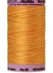Silk-finish 50wt Variegated Cotton Thread 500yd/457m Horizon