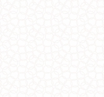 BLANK TEXTILES - Morning Mist IV - Overlapping Circles - White On White - W118-
