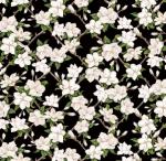 BLANK TEXTILES - Magnolia Mania - Small Magnolia - Black