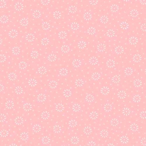 ANDOVER - Daisy - Cotton Candy