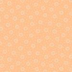 ANDOVER - Daisy - Cantaloupe