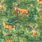 KAUFMAN - North American Wildlife - Digital - Forest - FB8289-