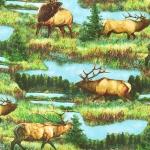 KAUFMAN - North American Wildlife - Digital - Nature - FB8290-