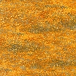 KAUFMAN - Vincent Van Gogh 3 - Harvest