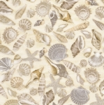 TIMELESS TREASURES - Beach - Shells