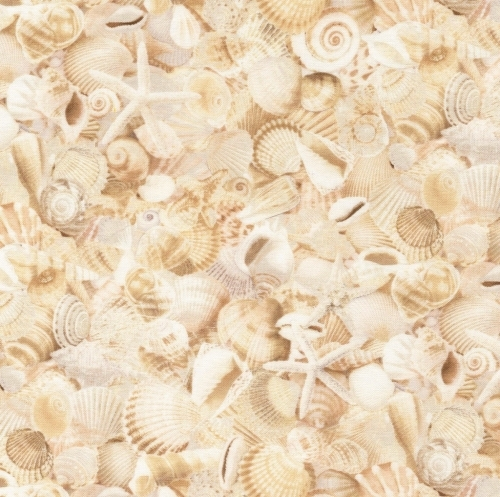 TIMELESS TREASURES - Beach - Packed Sea Shells